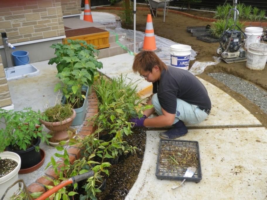 石巻市 植栽工事中です