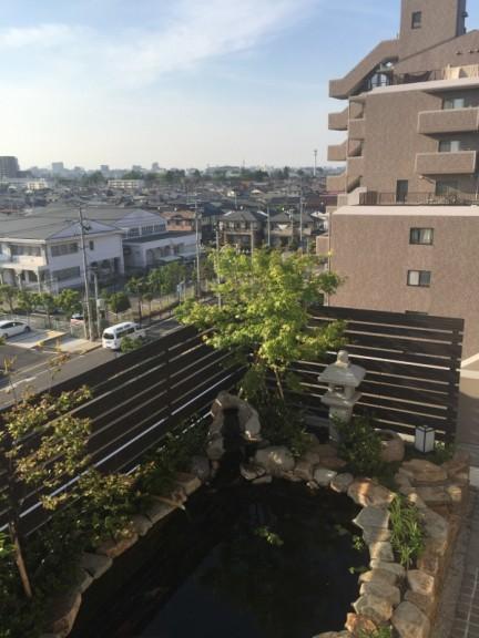 屋上庭園 池