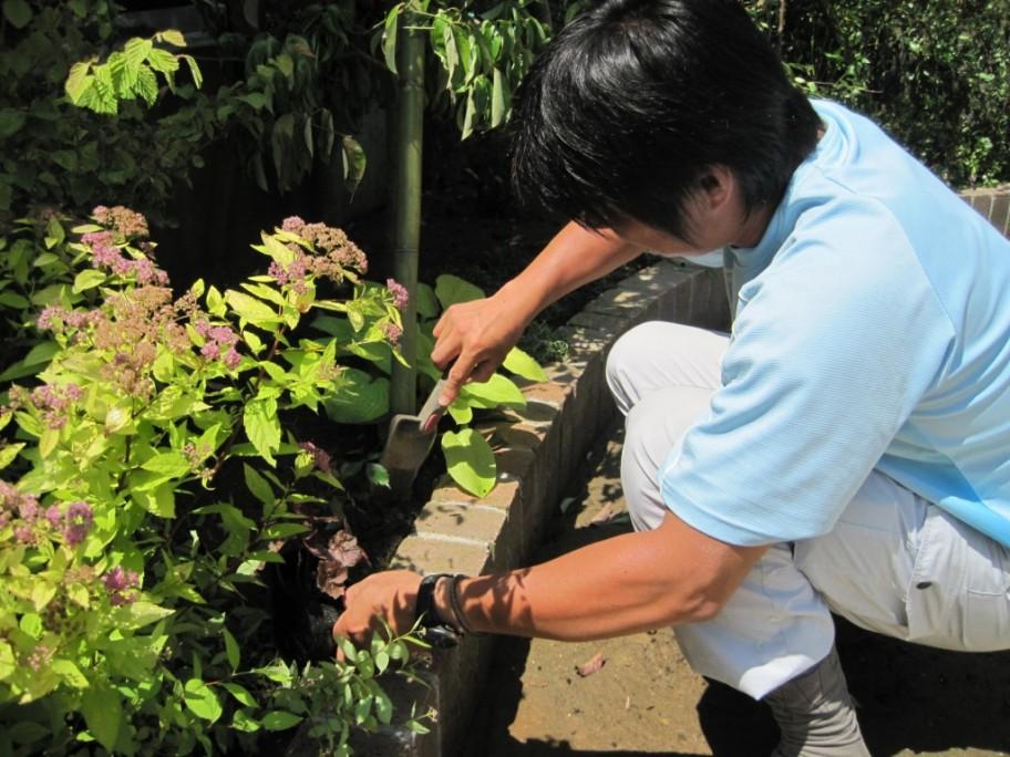 東松島市 植栽工事