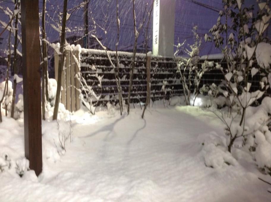 石巻は大雪で庭が真っ白です